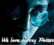 We Love Harry Potter